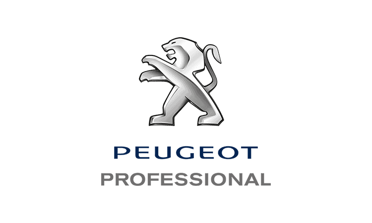 Peugeot tjänstebil